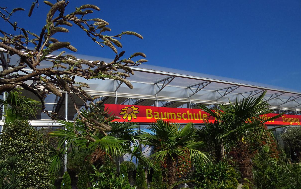 Pflanzenparadies Baumschule Weinheim