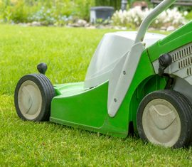 Rasen maehen und Rasenpflege