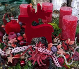 Roter Weihnachtsstern und Weihnachtsdeko